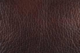 Padded Leatherette 1